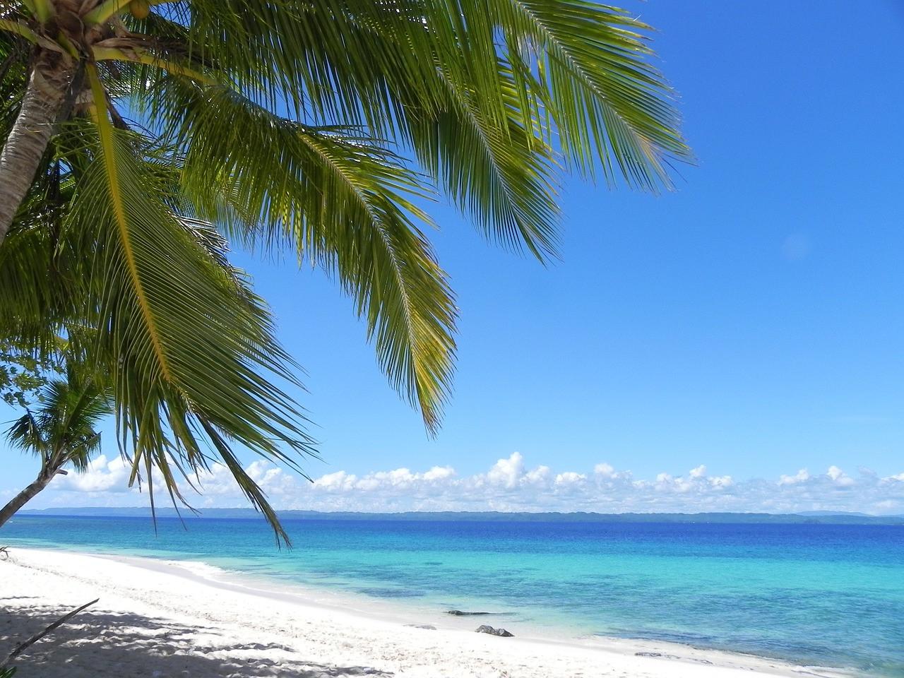 菲律賓斯巴達語言學校是什麼?3大特色告訴你!